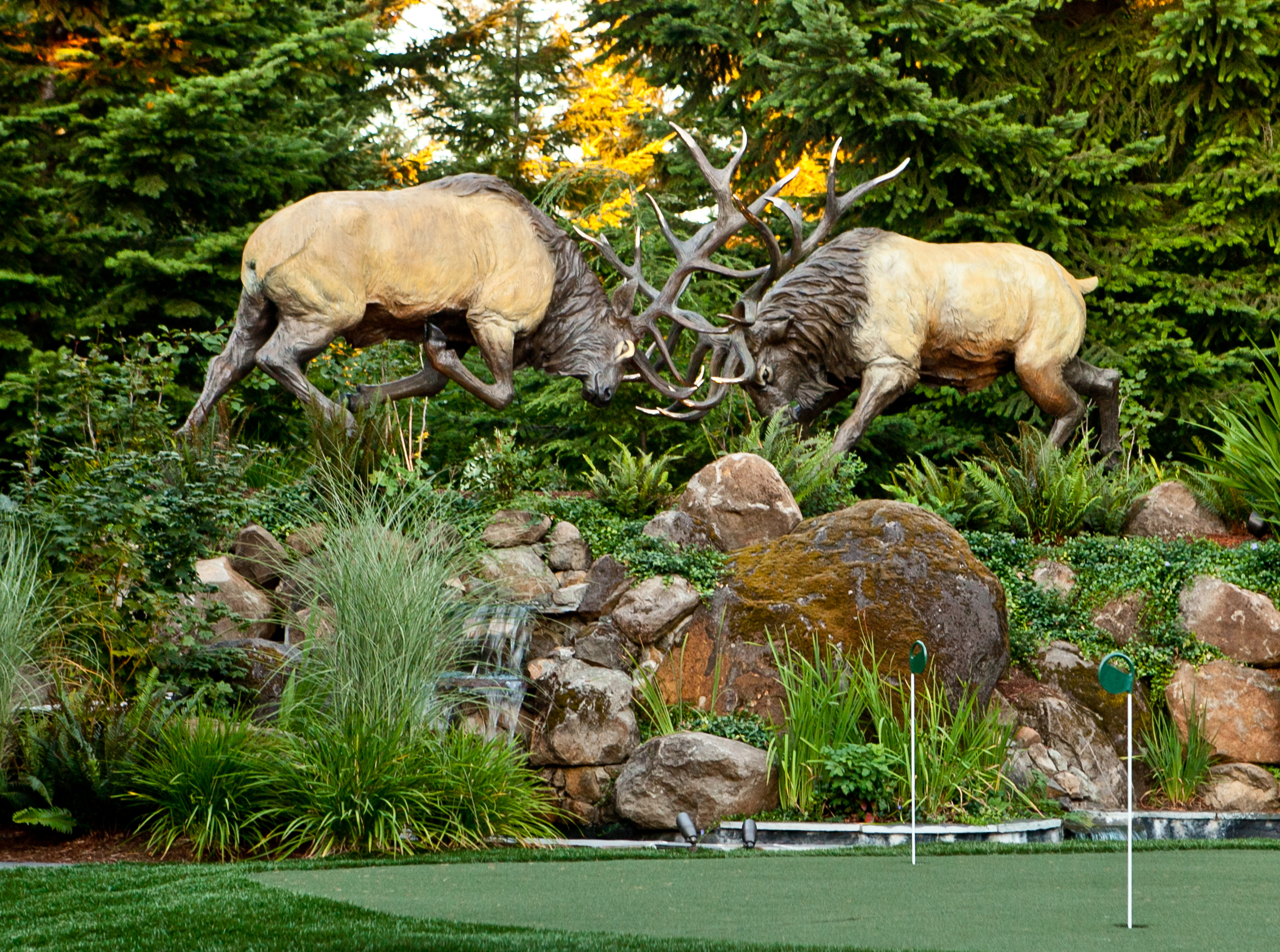 heroic size battling elk rutting, featured on a small putting green
